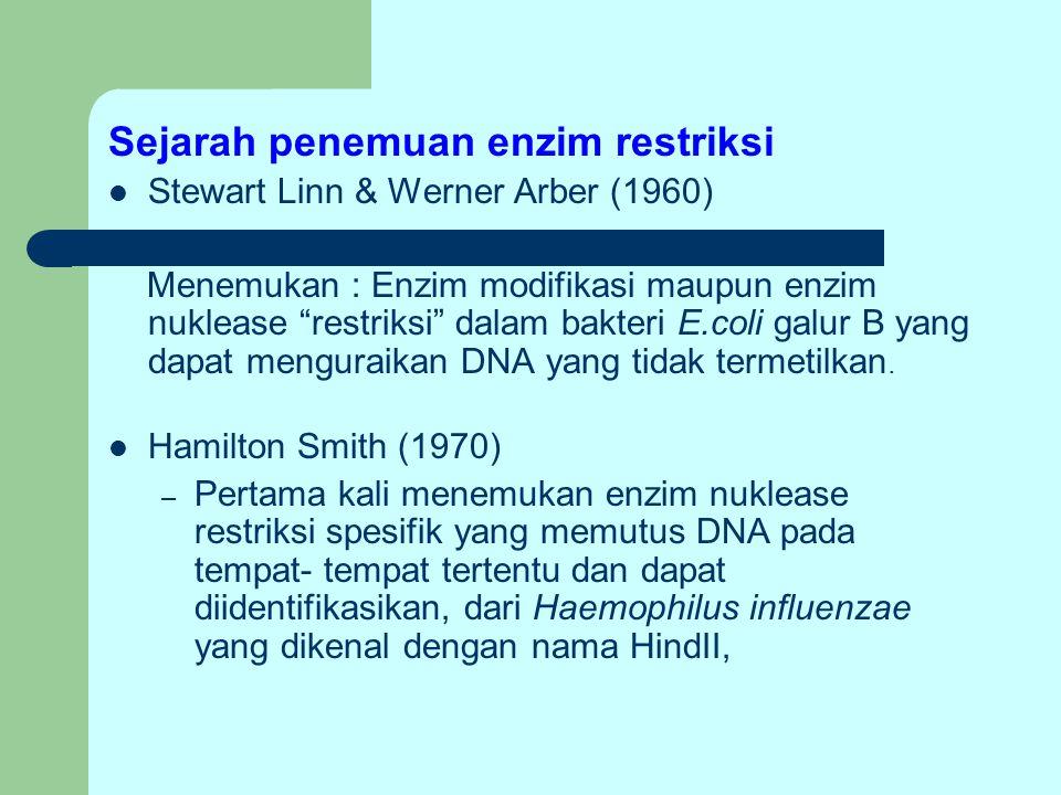 """Sejarah penemuan enzim restriksi Stewart Linn & Werner Arber (1960) Menemukan : Enzim modifikasi maupun enzim nuklease """"restriksi"""" dalam bakteri E.col"""