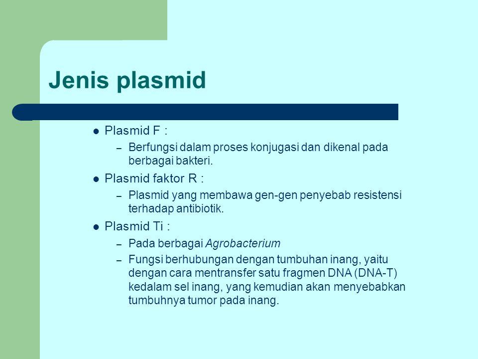 Jenis plasmid Plasmid F : – Berfungsi dalam proses konjugasi dan dikenal pada berbagai bakteri. Plasmid faktor R : – Plasmid yang membawa gen-gen peny