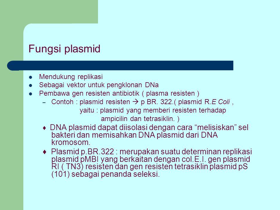 Fungsi plasmid Mendukung replikasi Sebagai vektor untuk pengklonan DNa Pembawa gen resisten antibiotik ( plasma resisten ) – Contoh : plasmid resisten