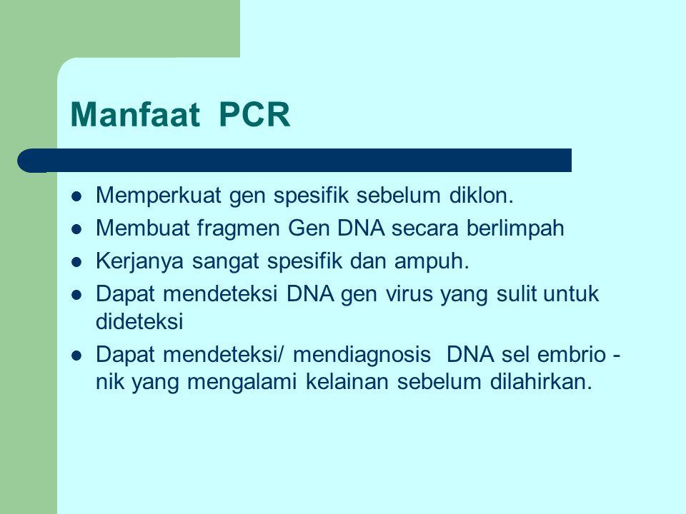 Manfaat PCR Memperkuat gen spesifik sebelum diklon. Membuat fragmen Gen DNA secara berlimpah Kerjanya sangat spesifik dan ampuh. Dapat mendeteksi DNA