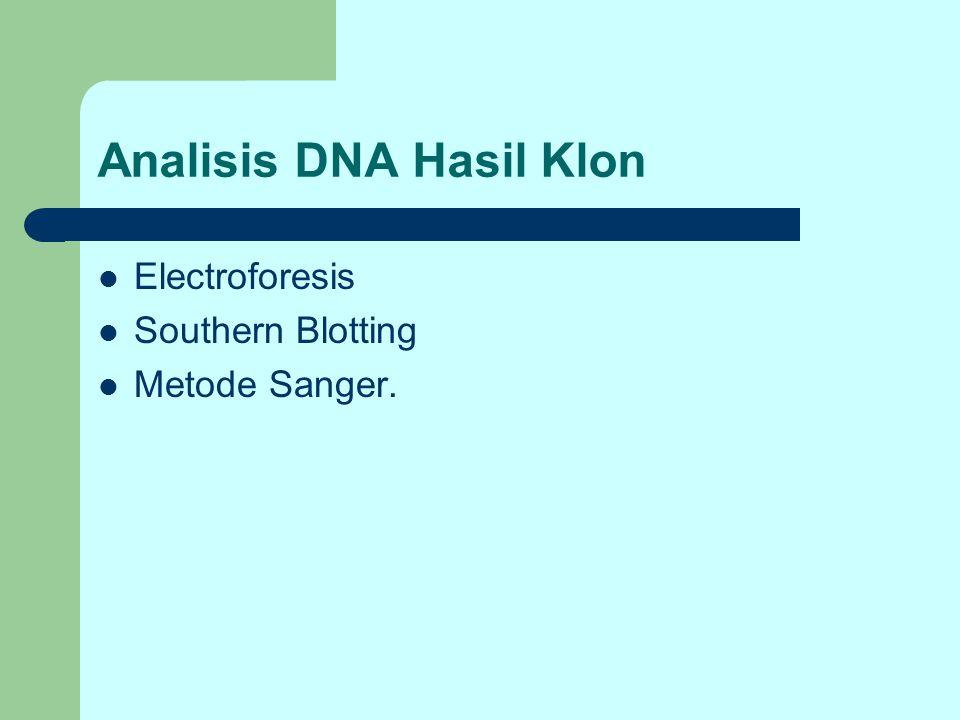 Analisis DNA Hasil Klon Electroforesis Southern Blotting Metode Sanger.