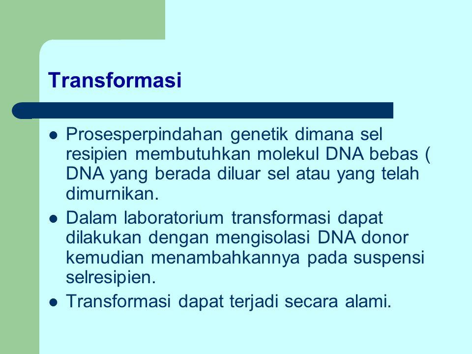 Transformasi Prosesperpindahan genetik dimana sel resipien membutuhkan molekul DNA bebas ( DNA yang berada diluar sel atau yang telah dimurnikan. Dala