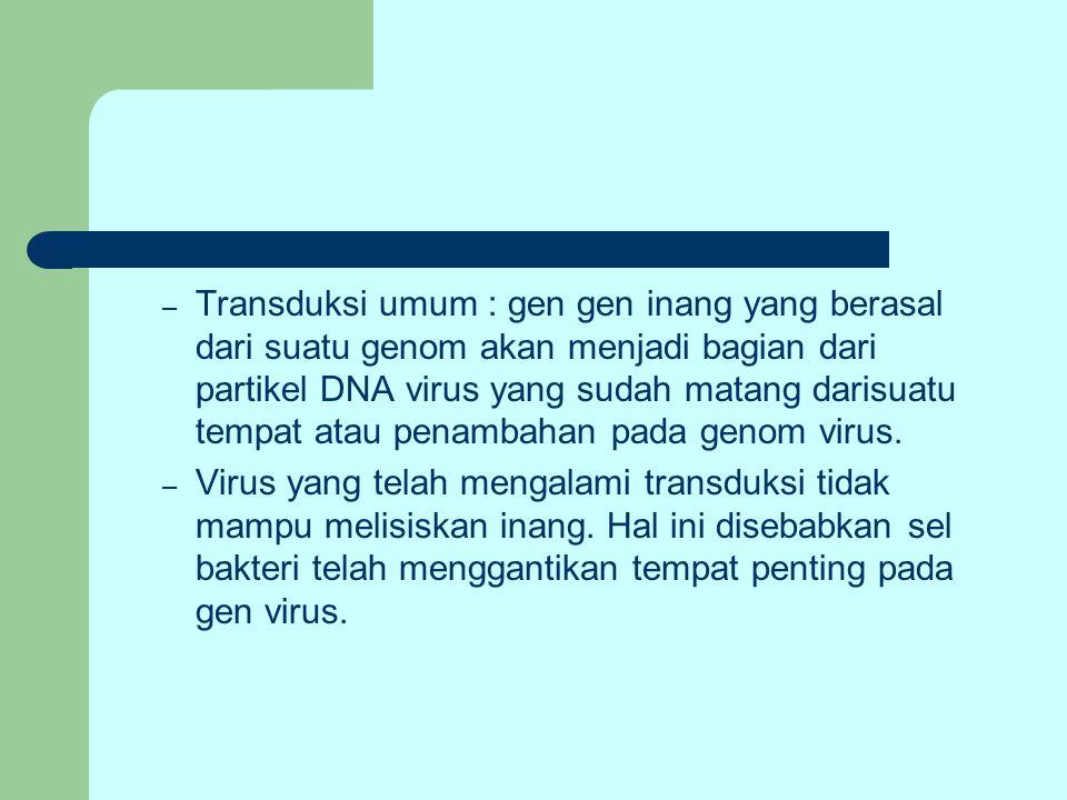 – Transduksi umum : gen gen inang yang berasal dari suatu genom akan menjadi bagian dari partikel DNA virus yang sudah matang darisuatu tempat atau pe