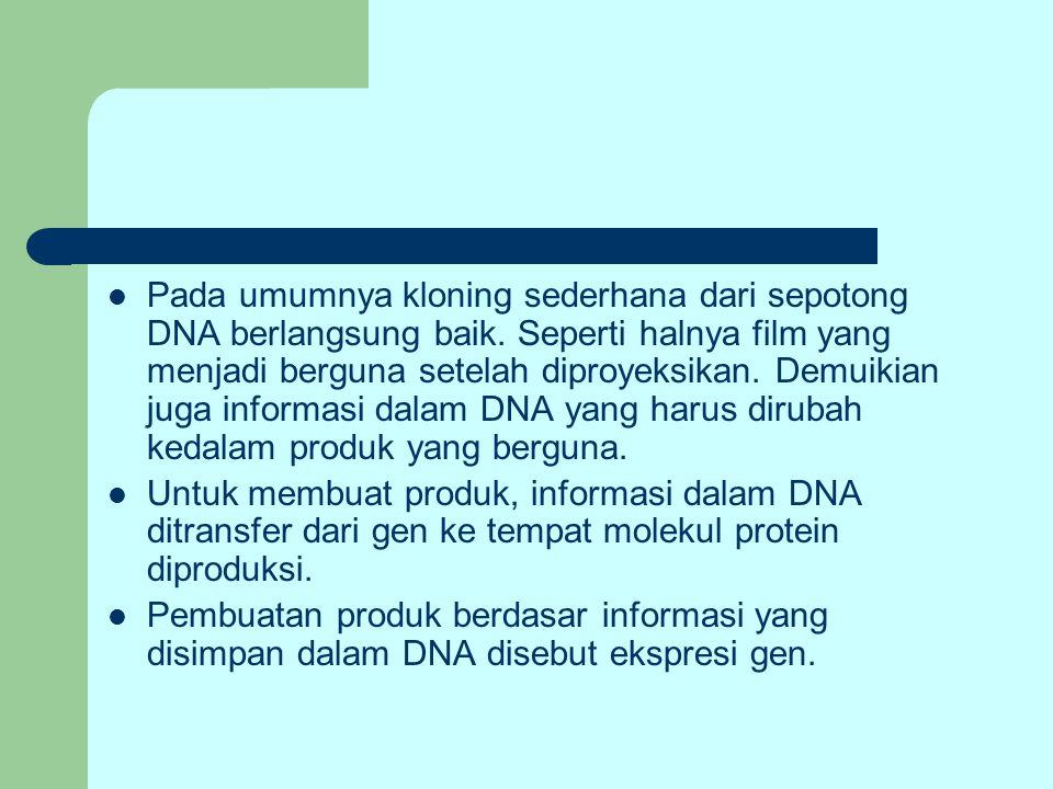 Pada umumnya kloning sederhana dari sepotong DNA berlangsung baik. Seperti halnya film yang menjadi berguna setelah diproyeksikan. Demuikian juga info