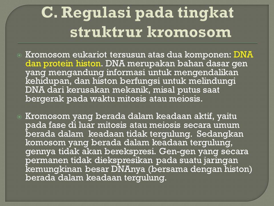 C. Regulasi pada tingkat struktrur kromosom  Kromosom eukariot tersusun atas dua komponen: DNA dan protein histon. DNA merupakan bahan dasar gen yang