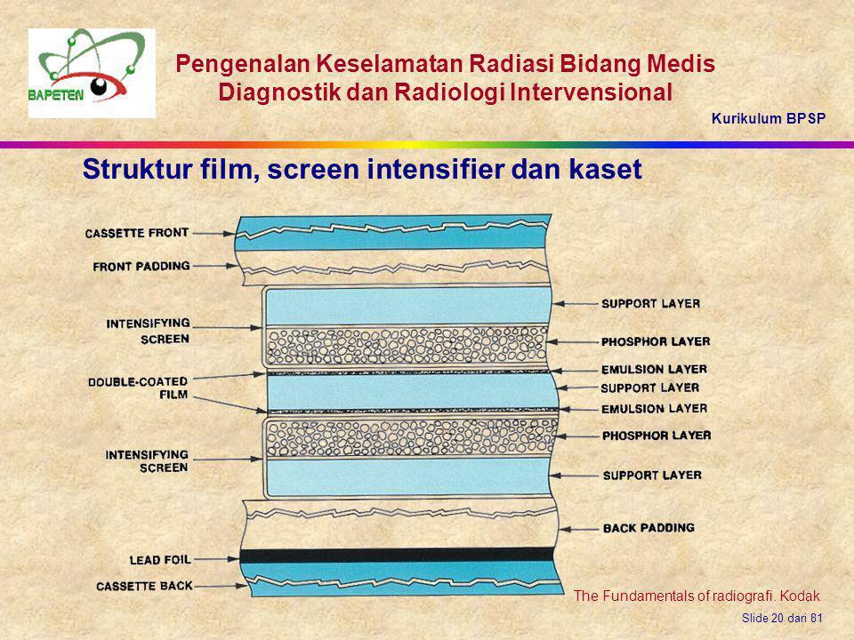 Kurikulum BPSP Pengenalan Keselamatan Radiasi Bidang Medis Diagnostik dan Radiologi Intervensional Slide 20 dari 81 Struktur film, screen intensifier