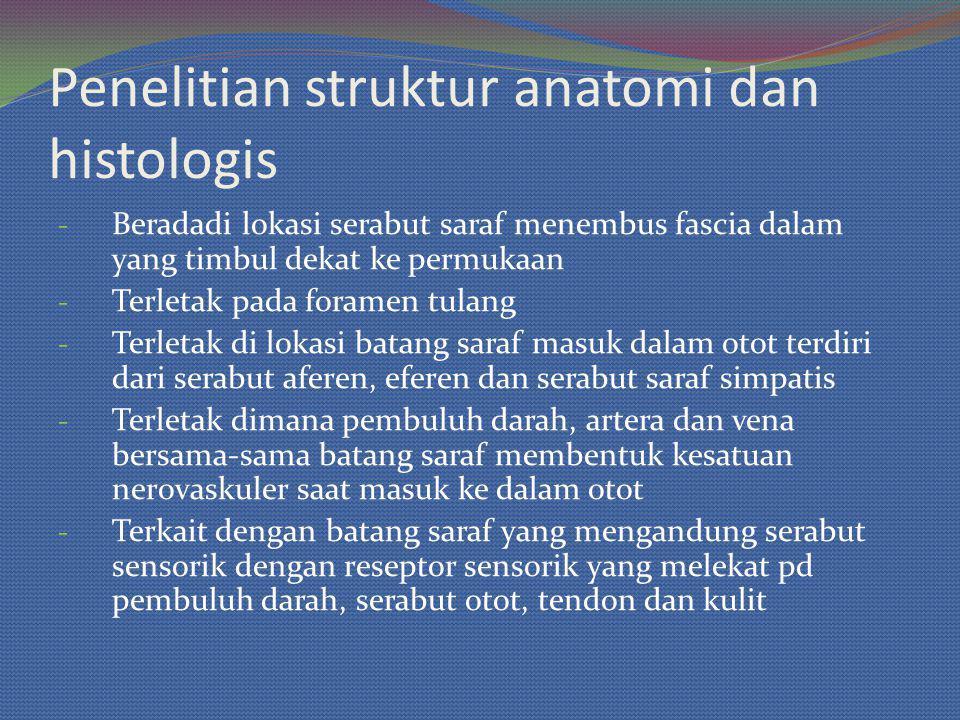 Penelitian struktur anatomi dan histologis - Beradadi lokasi serabut saraf menembus fascia dalam yang timbul dekat ke permukaan - Terletak pada forame