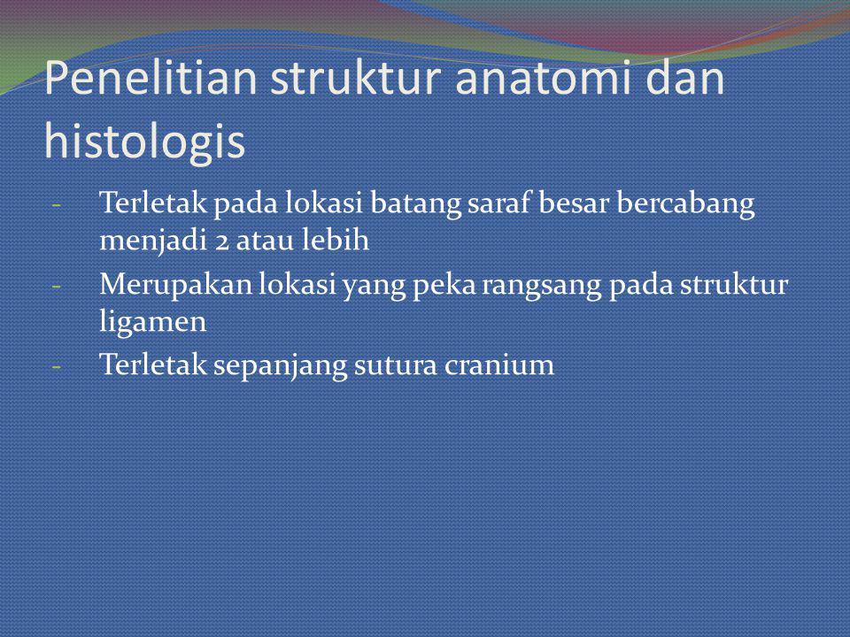 Penelitian struktur anatomi dan histologis - Terletak pada lokasi batang saraf besar bercabang menjadi 2 atau lebih - Merupakan lokasi yang peka rangsang pada struktur ligamen - Terletak sepanjang sutura cranium