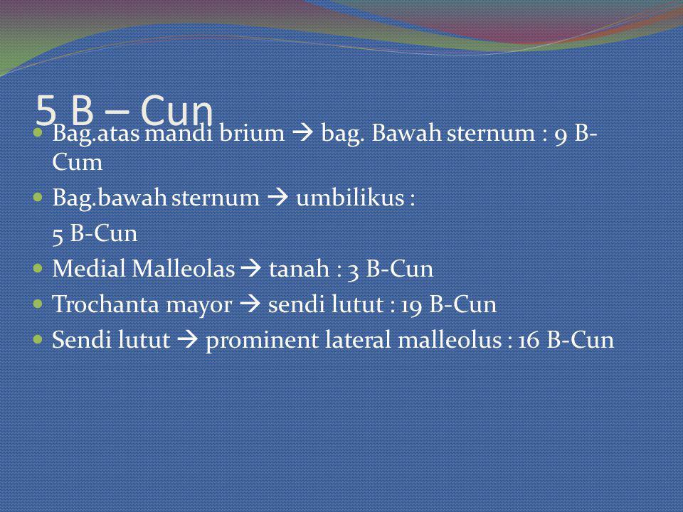 5 B – Cun Bag.atas mandi brium  bag. Bawah sternum : 9 B- Cum Bag.bawah sternum  umbilikus : 5 B-Cun Medial Malleolas  tanah : 3 B-Cun Trochanta ma
