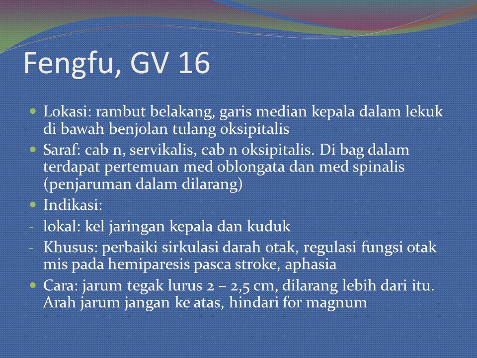 Fengfu, GV 16 Lokasi: rambut belakang, garis median kepala dalam lekuk di bawah benjolan tulang oksipitalis Saraf: cab n, servikalis, cab n oksipitali