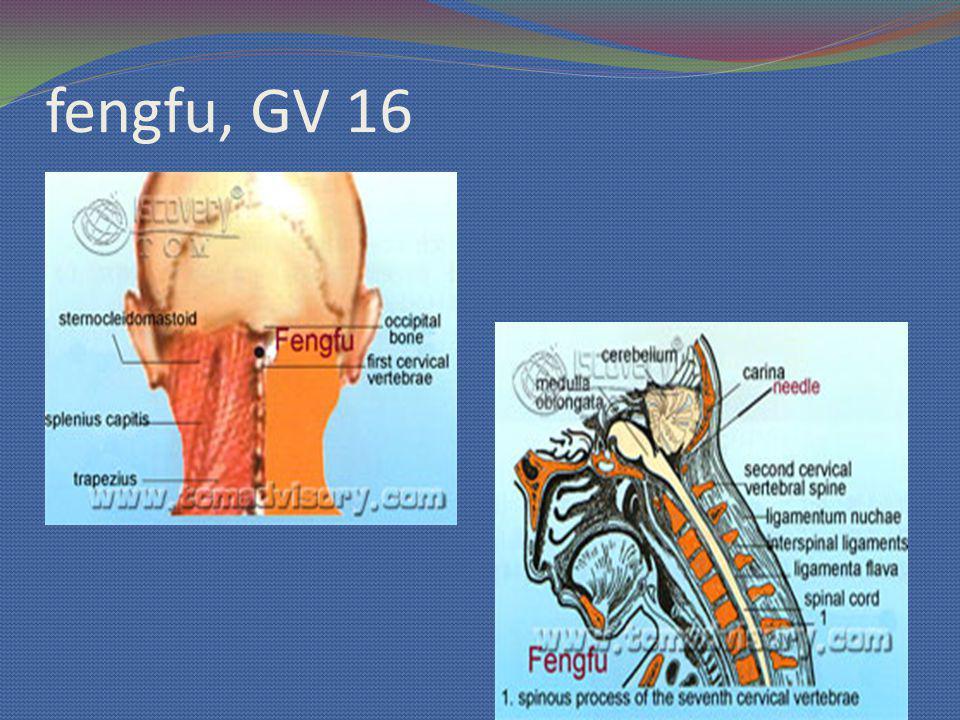 fengfu, GV 16
