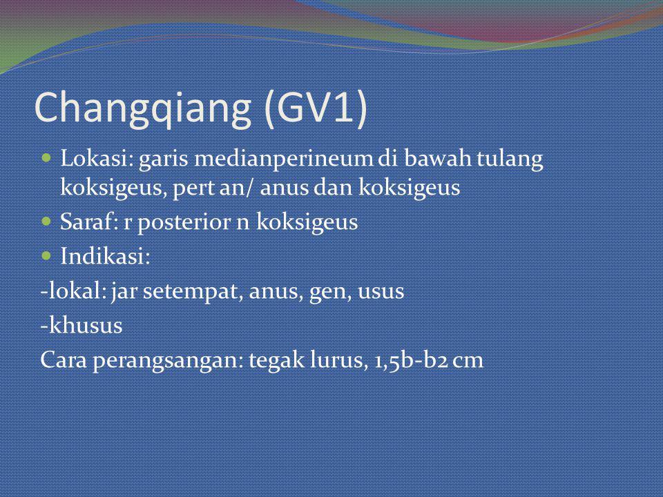 Changqiang (GV1) Lokasi: garis medianperineum di bawah tulang koksigeus, pert an/ anus dan koksigeus Saraf: r posterior n koksigeus Indikasi: -lokal: jar setempat, anus, gen, usus -khusus Cara perangsangan: tegak lurus, 1,5b-b2 cm