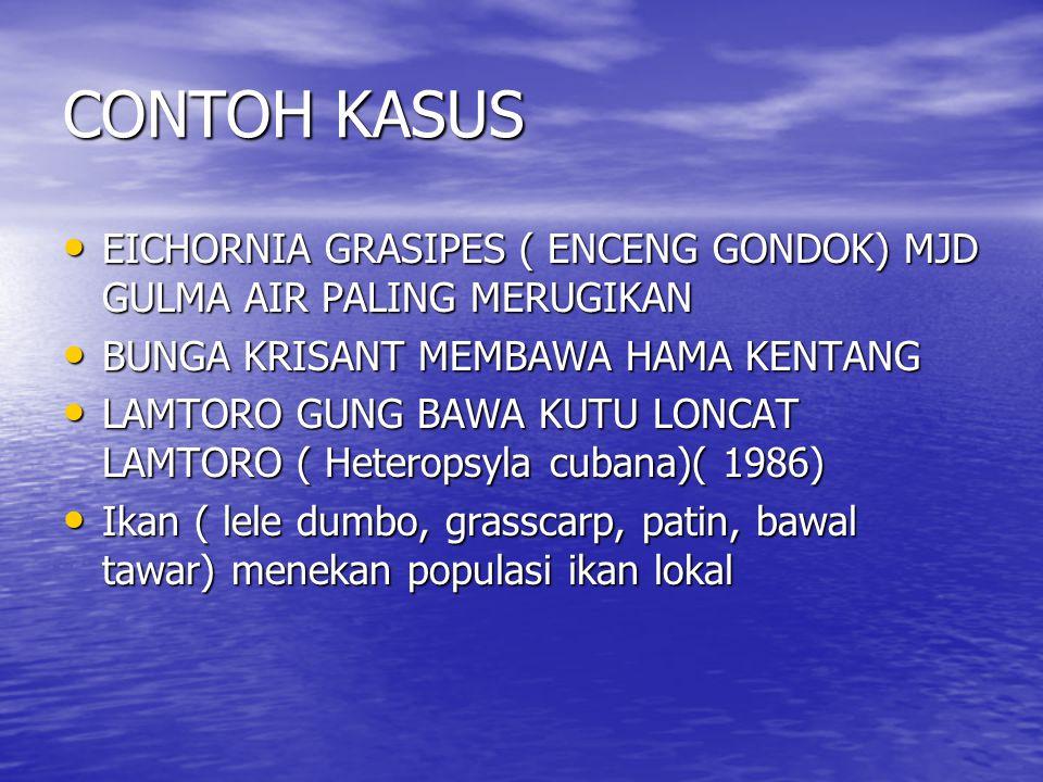 CONTOH KASUS EICHORNIA GRASIPES ( ENCENG GONDOK) MJD GULMA AIR PALING MERUGIKAN EICHORNIA GRASIPES ( ENCENG GONDOK) MJD GULMA AIR PALING MERUGIKAN BUN