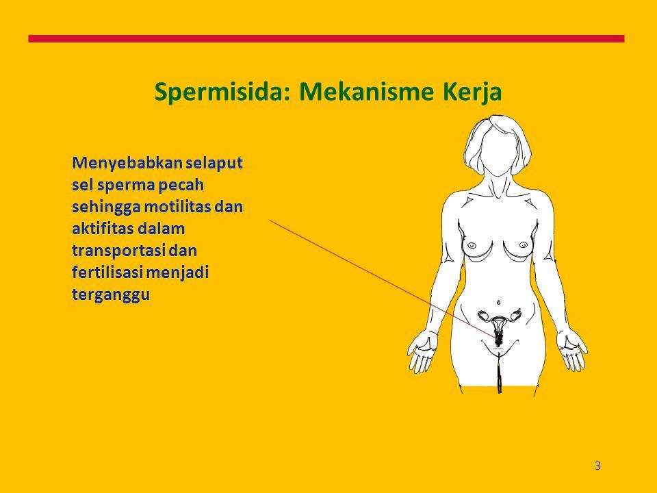 3 Spermisida: Mekanisme Kerja Menyebabkan selaput sel sperma pecah sehingga motilitas dan aktifitas dalam transportasi dan fertilisasi menjadi tergang