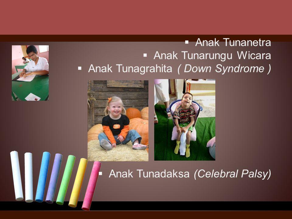  Anak Tunanetra  Anak Tunarungu Wicara  Anak Tunagrahita ( Down Syndrome )  Anak Tunadaksa (Celebral Palsy)