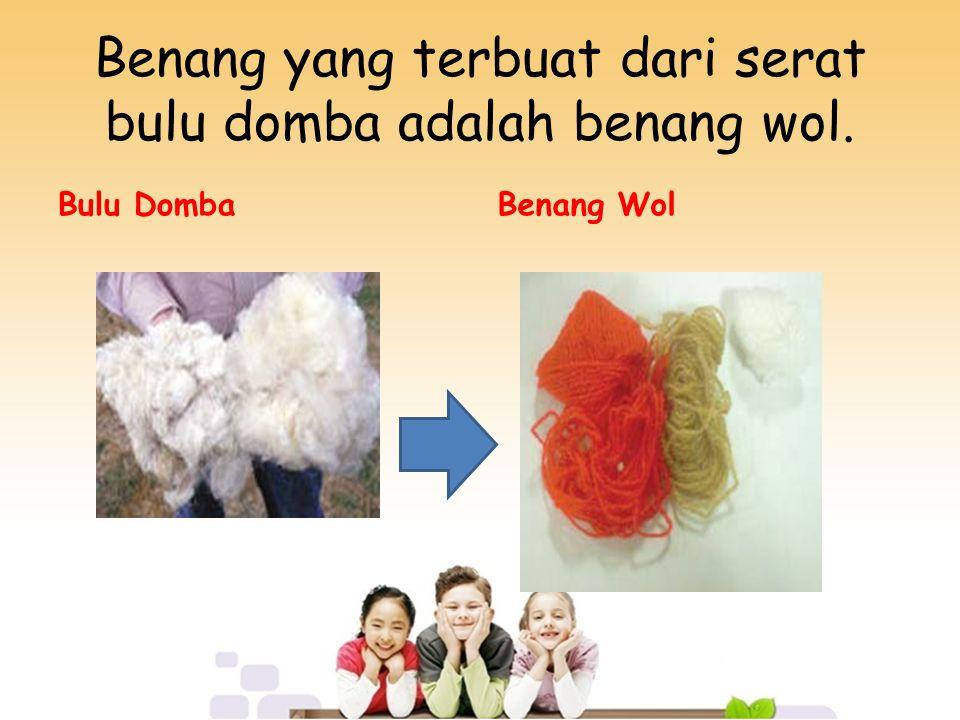 Benang yang terbuat dari serat bulu domba adalah benang wol. Bulu DombaBenang Wol