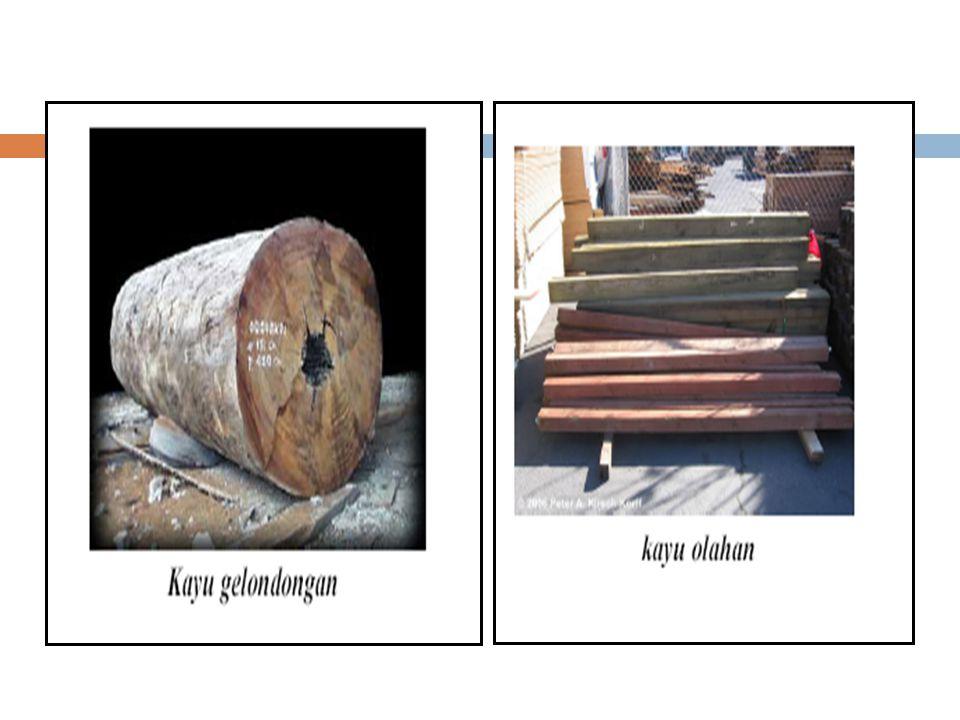 Jenis jenis kayu 3.