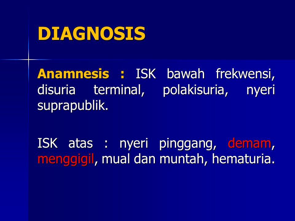 DIAGNOSIS Anamnesis : ISK bawah frekwensi, disuria terminal, polakisuria, nyeri suprapublik. ISK atas : nyeri pinggang, demam, menggigil, mual dan mun