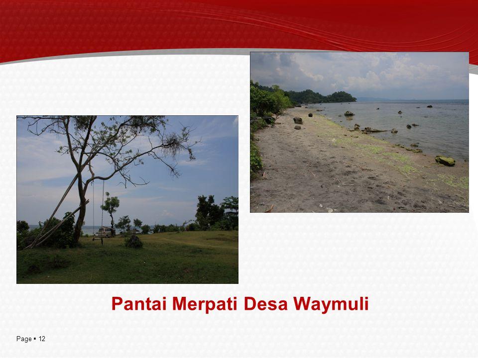 Page  12 Pantai Merpati Desa Waymuli