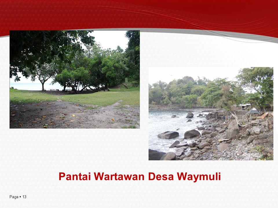 Page  13 Pantai Wartawan Desa Waymuli
