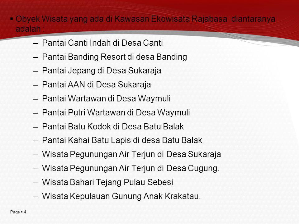 Page  5 LATAR BELAKANG POTENSI DI DELAPAN DESA :  Potensi obyek wisata bahari ( air laut yg jernih, pantai pasir alami )  Potensi budaya adat Rajabasa.