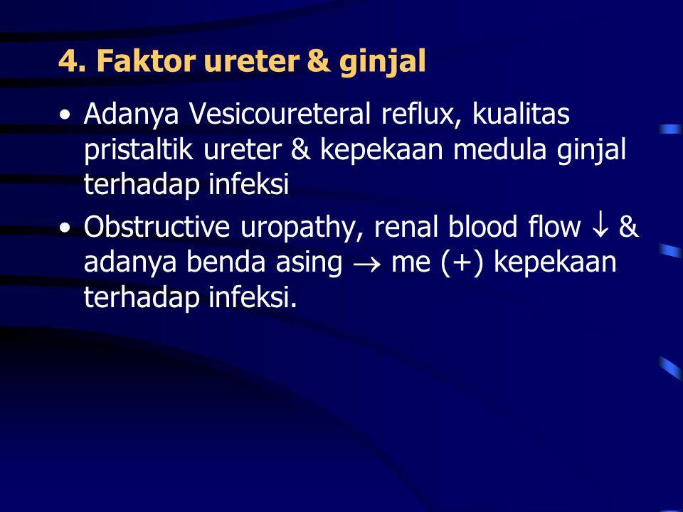4. Faktor ureter & ginjal Adanya Vesicoureteral reflux, kualitas pristaltik ureter & kepekaan medula ginjal terhadap infeksi Obstructive uropathy, ren