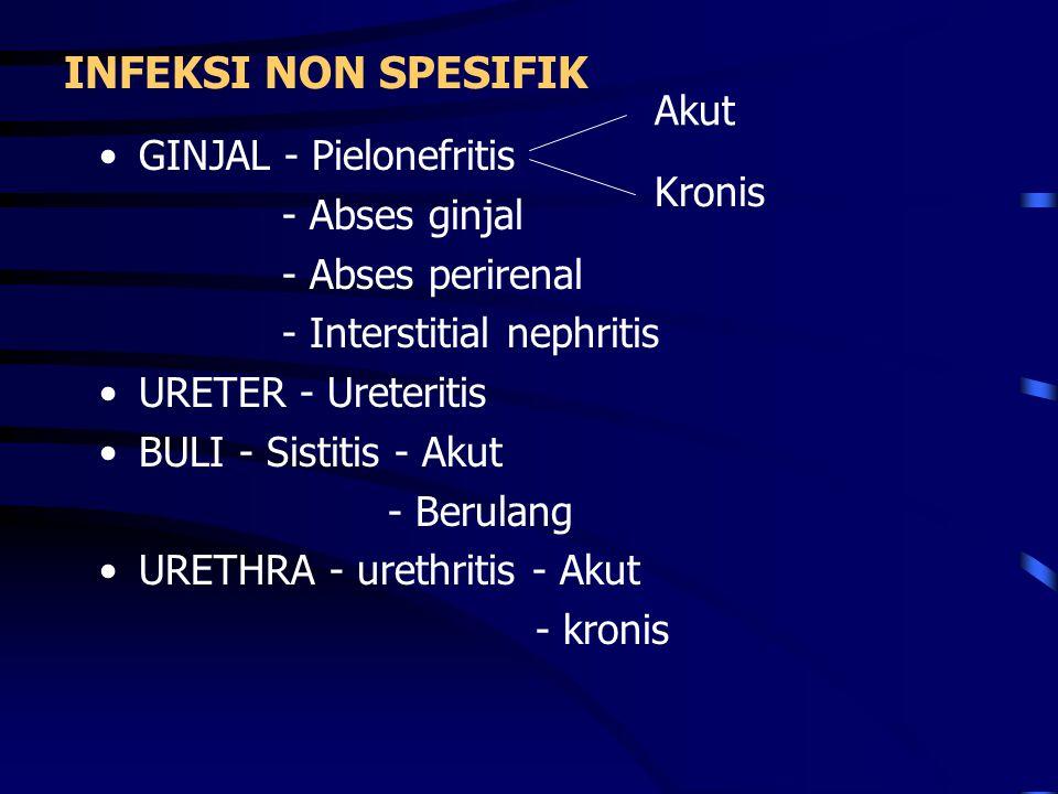 INFEKSI NON SPESIFIK GINJAL - Pielonefritis - Abses ginjal - Abses perirenal - Interstitial nephritis URETER - Ureteritis BULI - Sistitis - Akut - Ber