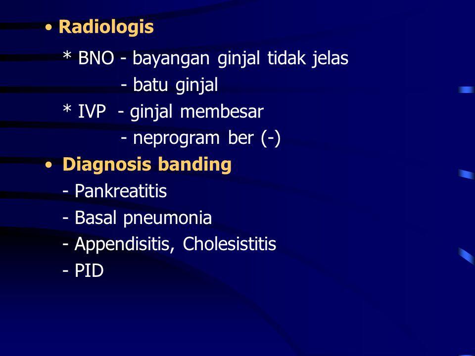 Radiologis * BNO - bayangan ginjal tidak jelas - batu ginjal * IVP - ginjal membesar - neprogram ber (-) Diagnosis banding - Pankreatitis - Basal pneu