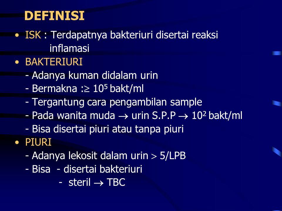 DEFINISI ISK : Terdapatnya bakteriuri disertai reaksi inflamasi BAKTERIURI - Adanya kuman didalam urin - Bermakna :  10 5 bakt/ml - Tergantung cara p