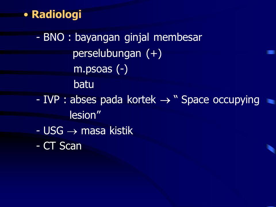"Radiologi - BNO : bayangan ginjal membesar perselubungan (+) m.psoas (-) batu - IVP : abses pada kortek  "" Space occupying lesion"" - USG  masa kisti"