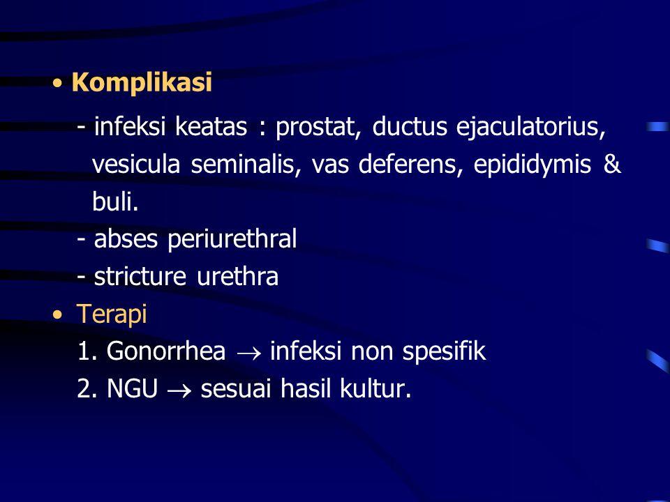 Komplikasi - infeksi keatas : prostat, ductus ejaculatorius, vesicula seminalis, vas deferens, epididymis & buli. - abses periurethral - stricture ure