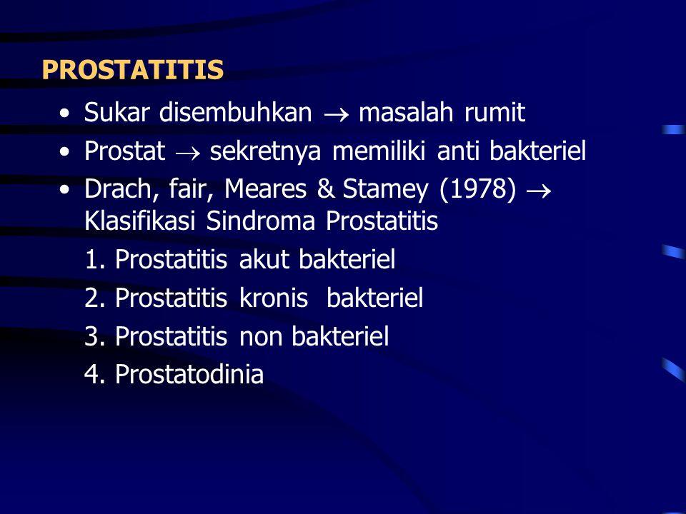 PROSTATITIS Sukar disembuhkan  masalah rumit Prostat  sekretnya memiliki anti bakteriel Drach, fair, Meares & Stamey (1978)  Klasifikasi Sindroma P