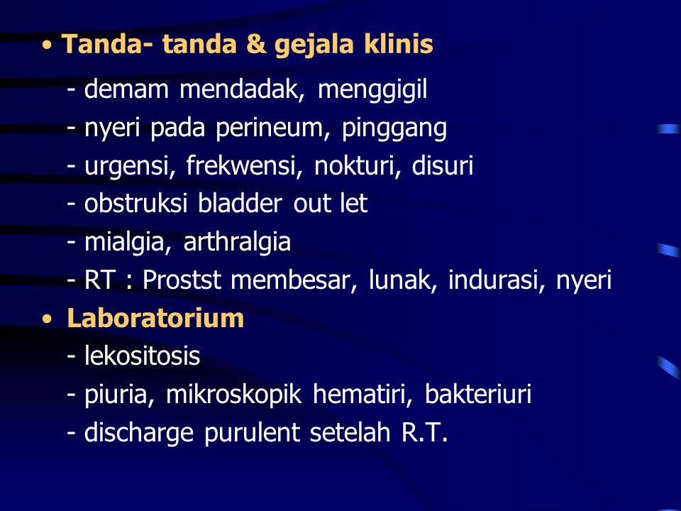 Tanda- tanda & gejala klinis - demam mendadak, menggigil - nyeri pada perineum, pinggang - urgensi, frekwensi, nokturi, disuri - obstruksi bladder out