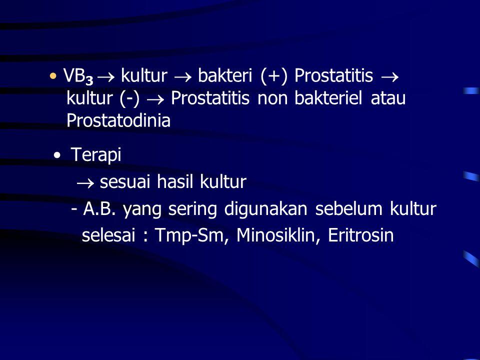 PROSTATITIS NONBAKTERIEL tersering penyebab tidak diketahui Tanda-tanda & gejala klinis - sama dengan yang bakteriel - tidak ada riwayat infeksi saluran kemih Laboratorium EPS : - sel radang (+) - bakteri (-) Terapi  A.B.