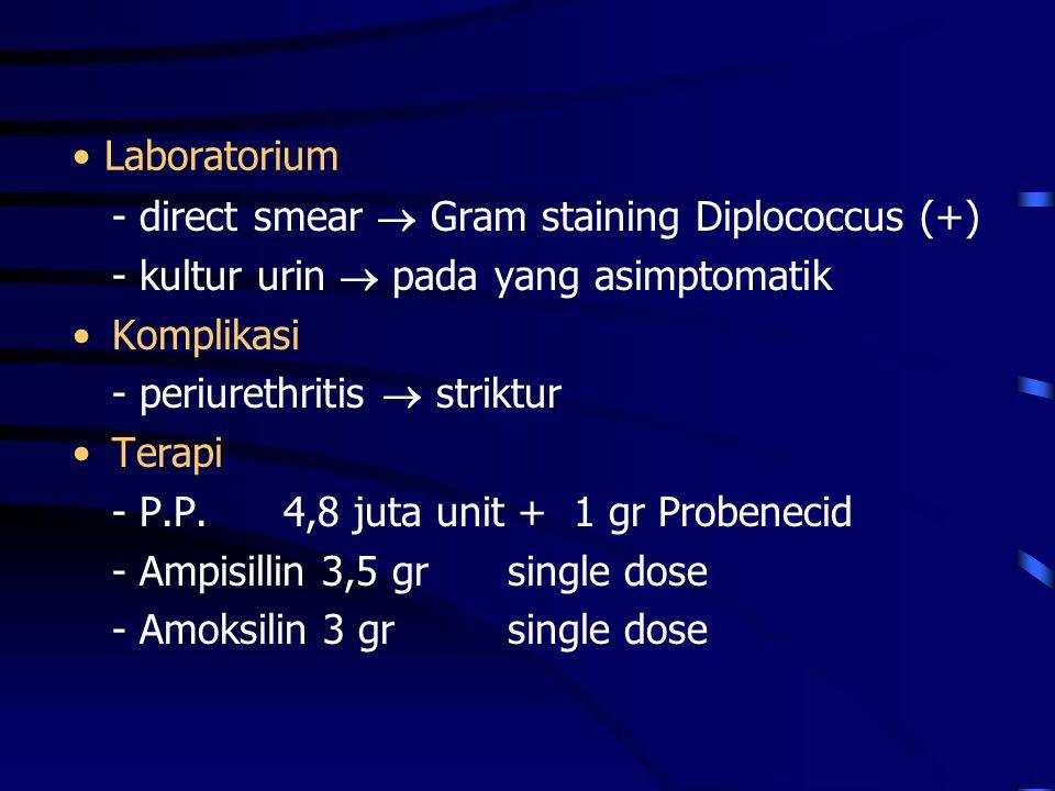 Laboratorium - direct smear  Gram staining Diplococcus (+) - kultur urin  pada yang asimptomatik Komplikasi - periurethritis  striktur Terapi - P.P