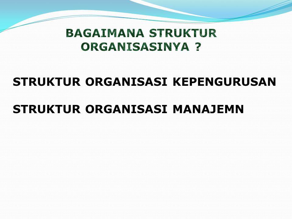 STRUKTUR ORGANISASI KEPENGURUSAN STRUKTUR ORGANISASI MANAJEMN