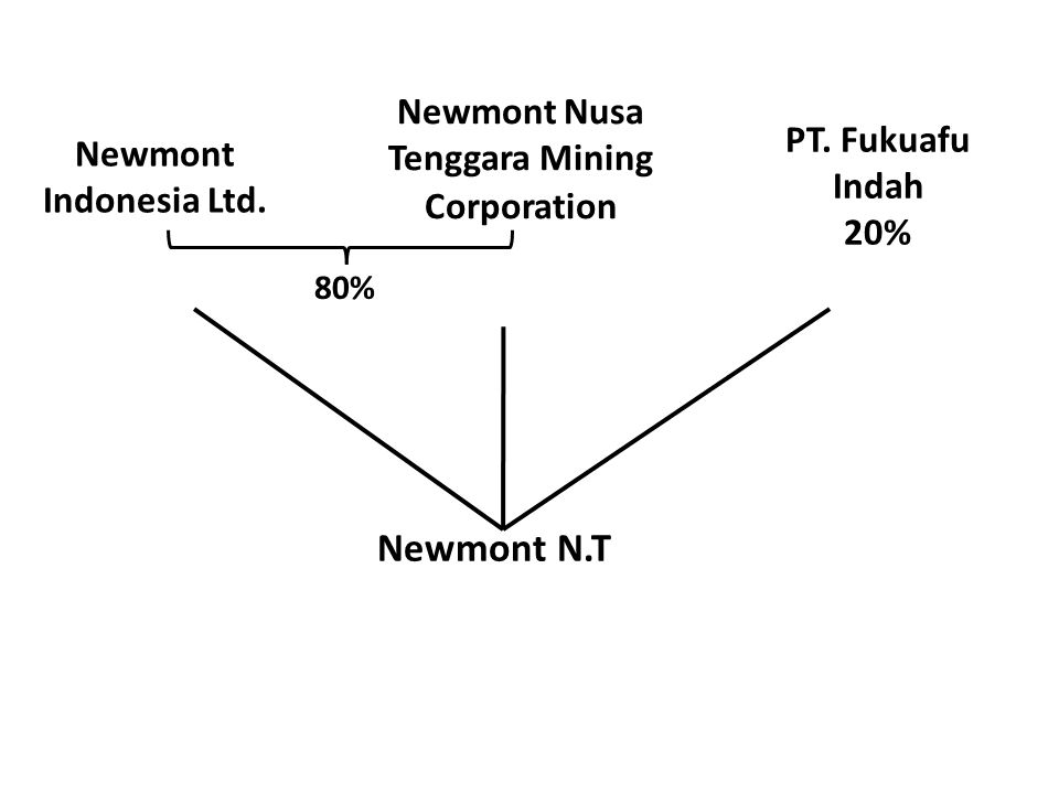 Newmont Indonesia Ltd. PT. Fukuafu Indah 20% Newmont N.T Newmont Nusa Tenggara Mining Corporation 80%