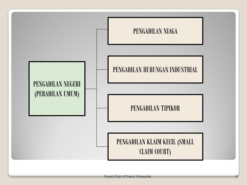 PENGADILAN NEGERI (PERADILAN UMUM) PENGADILAN NIAGA PENGADILAN HUBUNGAN INDUSTRIAL PENGADILAN TIPIKOR PENGADILAN KLAIM KECIL (SMALL CLAIM COURT) Prope