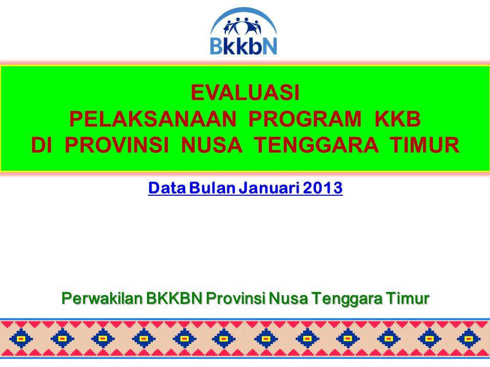 EVALUASI PELAKSANAAN PROGRAM KKB DI PROVINSI NUSA TENGGARA TIMUR Data Bulan Januari 2013 Perwakilan BKKBN Provinsi Nusa Tenggara Timur