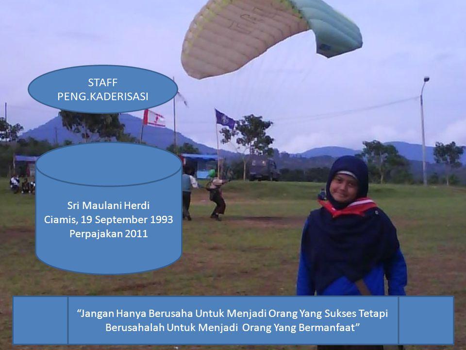 STAFF PENG.KADERISASI Rd.Maulana A.M.I Marketing 2011