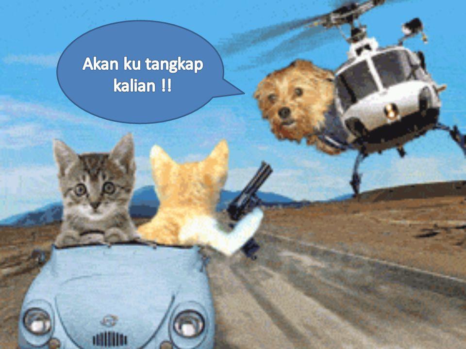 "STAFF PENG.HUB.ORGANISASI Pina Rizkina Maulida Bandung 7 September 1993 Akuntansi 2011 "" Do The Best What You Can Do """