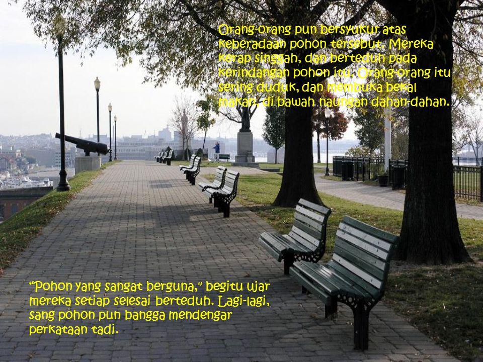 Orang-orang pun bersyukur atas keberadaan pohon tersebut. Mereka kerap singgah, dan berteduh pada kerindangan pohon itu. Orang-orang itu sering duduk,