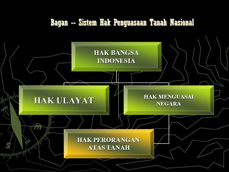 Bagan -- Sistem Hak Penguasaan Tanah Nasional HAK BANGSA INDONESIA HAK ULAYAT HAK MENGUASAI NEGARA HAK PERORANGAN ATAS TANAH