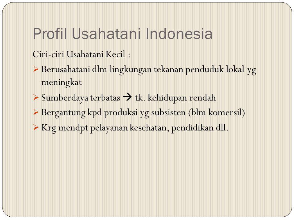 Profil Usahatani Indonesia Ciri-ciri Usahatani Kecil :  Berusahatani dlm lingkungan tekanan penduduk lokal yg meningkat  Sumberdaya terbatas  tk. k