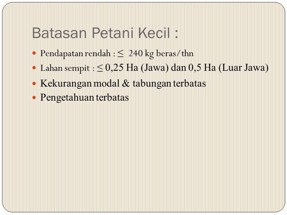 Batasan Petani Kecil : Pendapatan rendah : ≤ 240 kg beras/thn Lahan sempit : ≤ 0,25 Ha (Jawa) dan 0,5 Ha (Luar Jawa) Kekurangan modal & tabungan terba