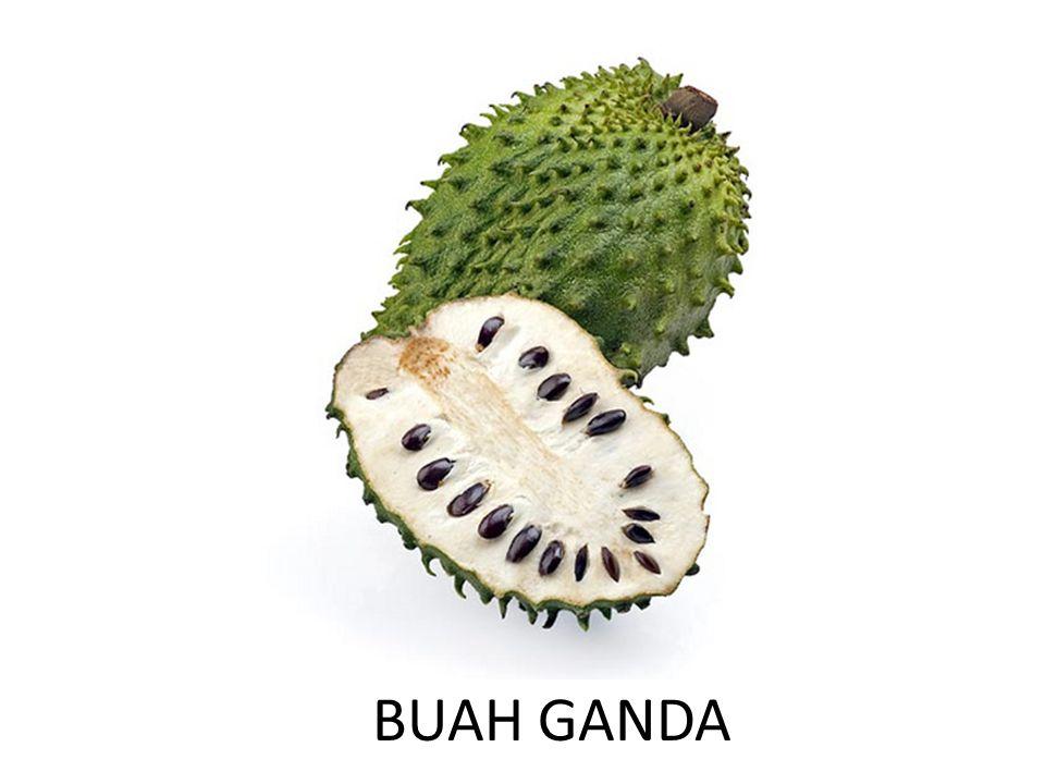 BUAH GANDA