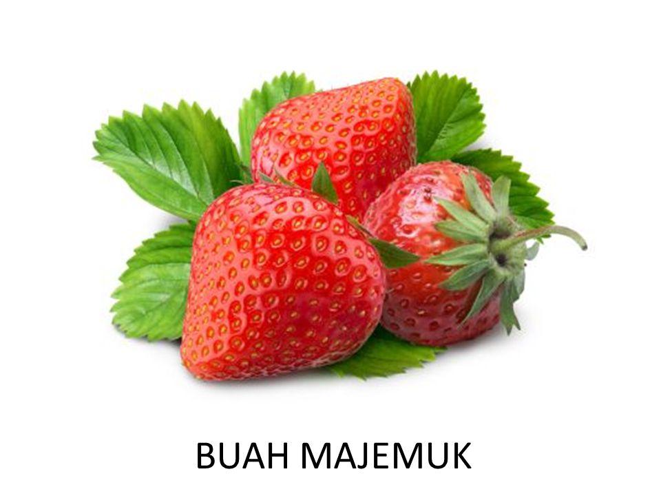 BUAH MAJEMUK