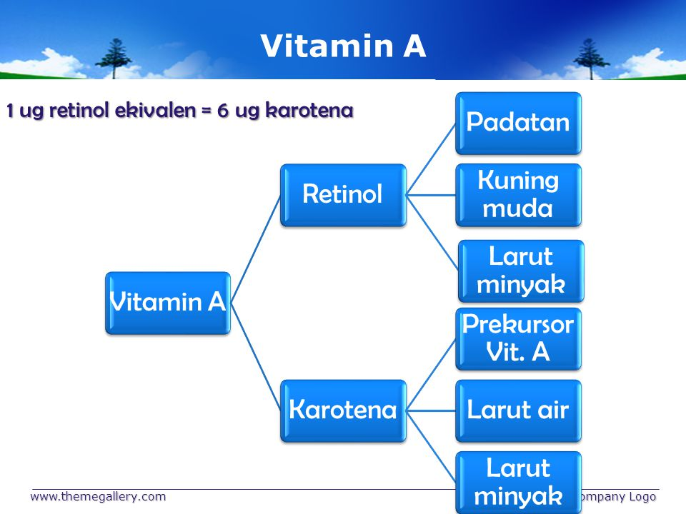 Vitamin C (Asam Askorbat) Sumber: - pangan nabati - daun singkong - daun katuk - pepaya - jambu biji - jeruk manis - nenas www.themegallery.com Company Logo
