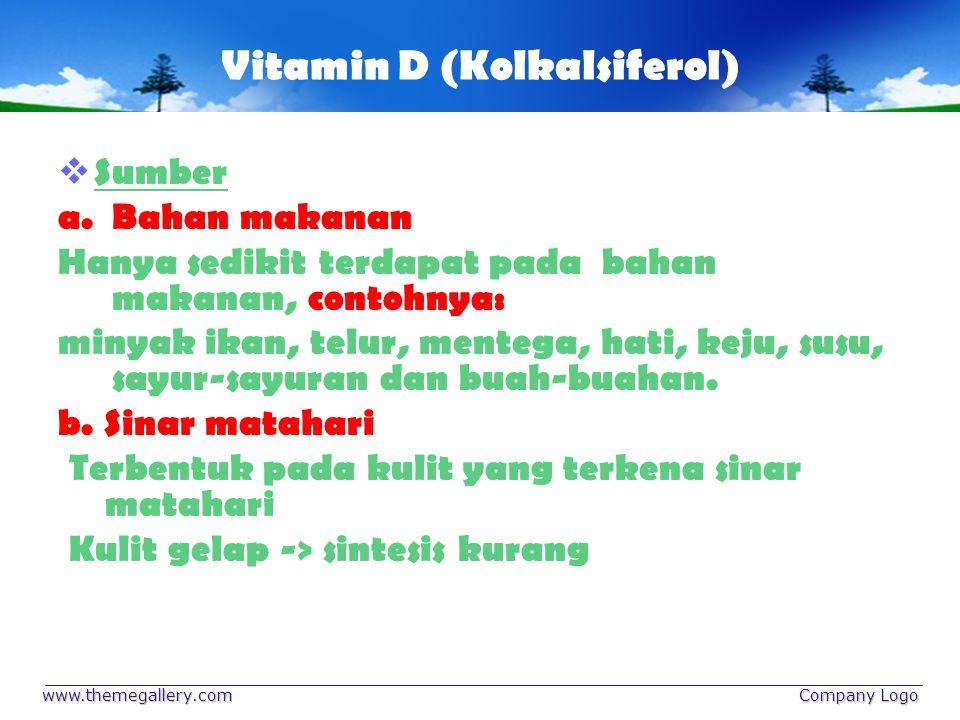 Vitamin E (Tokoferol) Sumber: a.minyak tumbuh-tumbuhan (minyak kecambah, gandum dan biji-bijian) b.Minyak kelapa dan minyak zaitun c.Daging, unggas, ikan dan kacang-kacangan d.Sayuran dan buah-buahan Merupakan antioksidan alami:  ditambahkan pada asam lemak tidak jenuh  Sebagai pelindung asam askorbat dari oksidasi www.themegallery.com Company Logo