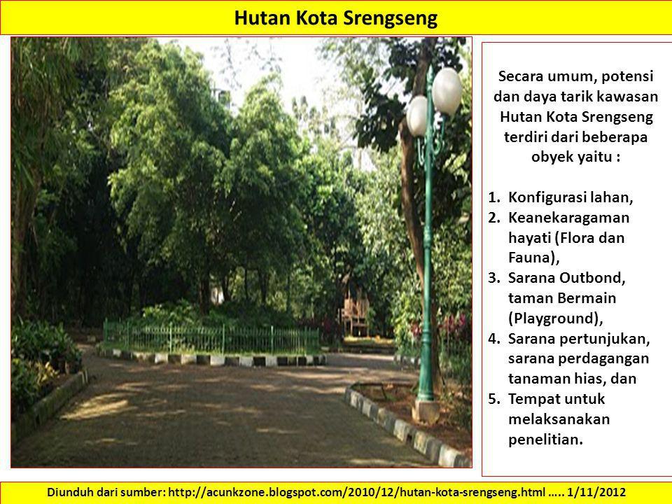 Hutan Kota Srengseng Diunduh dari sumber: http://acunkzone.blogspot.com/2010/12/hutan-kota-srengseng.html ….. 1/11/2012 Secara umum, potensi dan daya